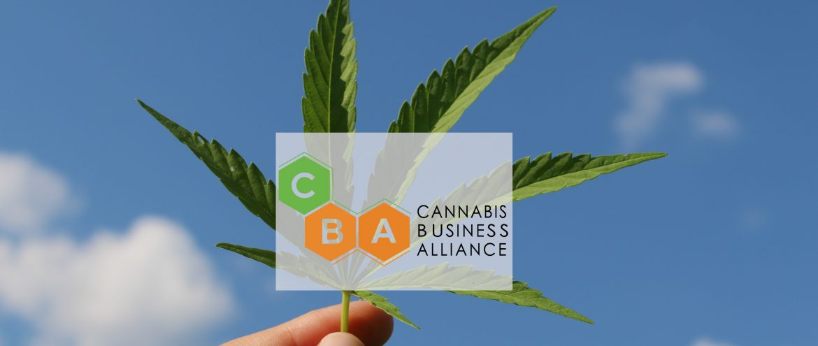 Caribbean Business Alliance logo over top of a photo with a person holding a cannabis leaf.